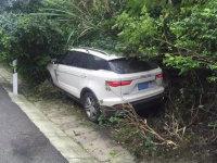 众泰离奇车祸 方向盘突然自转撞进树丛